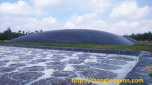 hê-thống-biogas-sử-dụng-màng-hdpe