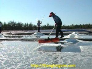 bạt-hdpe-lót-ruộng-muối-ở-Ninh-Thuận