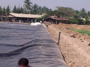 bạt-hdpe-làm-hầm-biogas