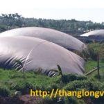 hầm-biogas