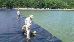 Màng chống thấm HDPE giữ nước sạch